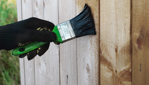 Захист деревини